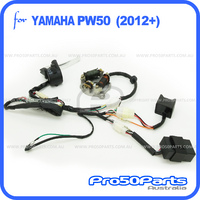 (PW50) - Complete Electrical Assy (2012-current)